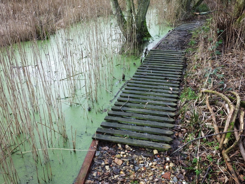 High Water Level In Dyke 14:05:39
