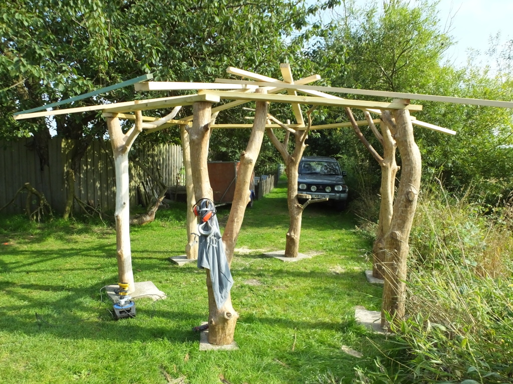 The Tree House Under Construction