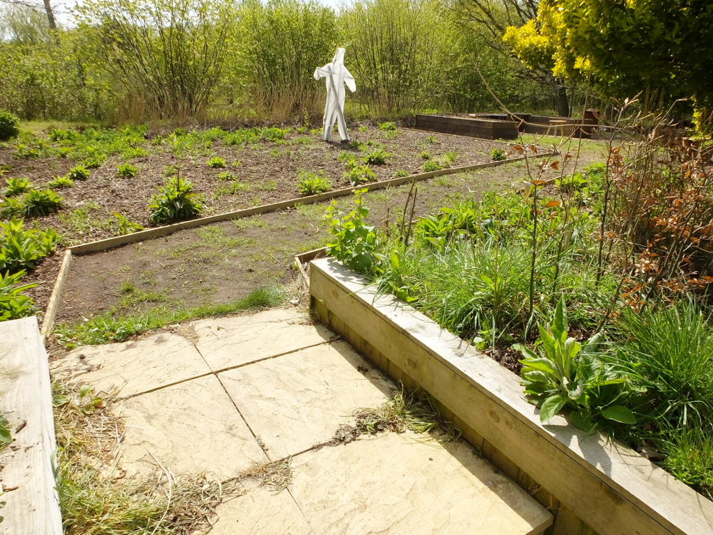 The Steps To The Reed Bed